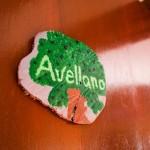 Avellano00_mini-500x300